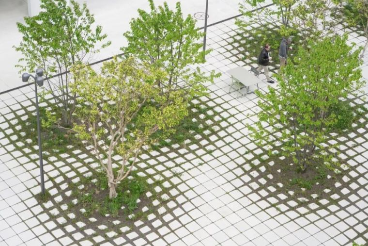 会种树,让设计具有高级感!_13