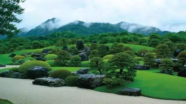 干货丨植物设计和绿化养护的思考