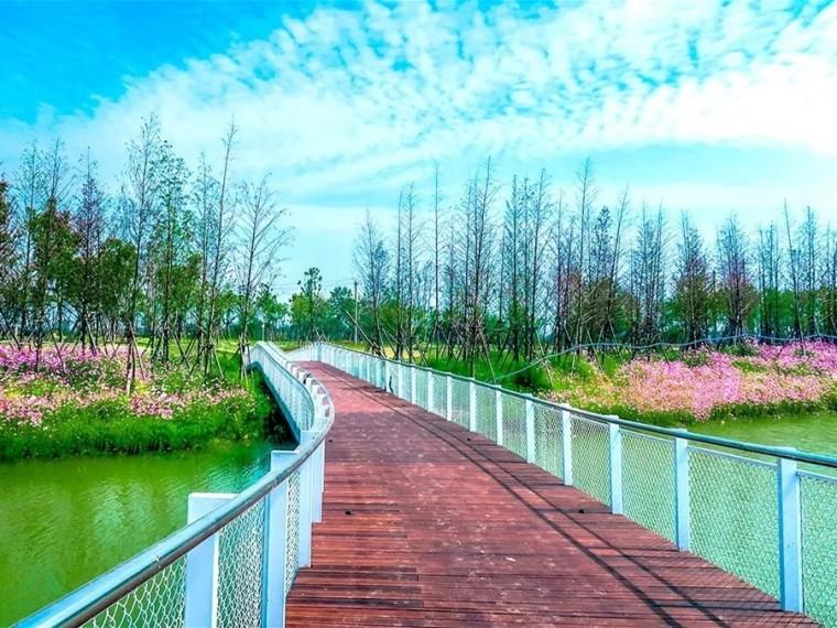 黄石奥林匹克公园