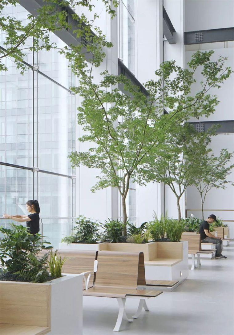 新作|体用合一的公民空间:昆山市政务服务中心