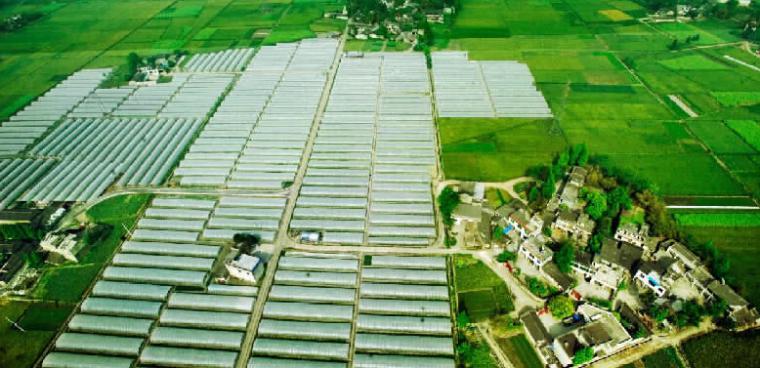 [湖南]现代农业示范基地改造项目安全文明施工监理规划