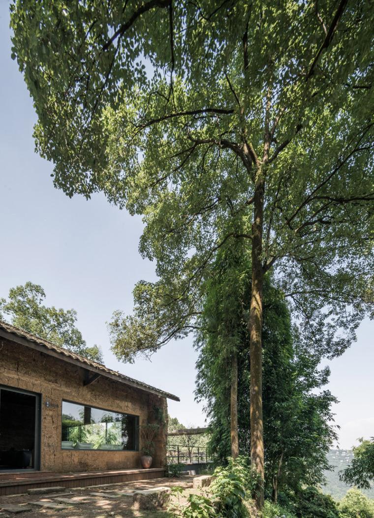 21-nanshan-bb-china-by-priestman-architects
