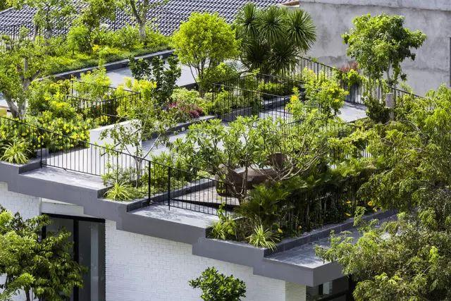 干货丨屋顶绿化知识详解,详细到什么程度你看看_34