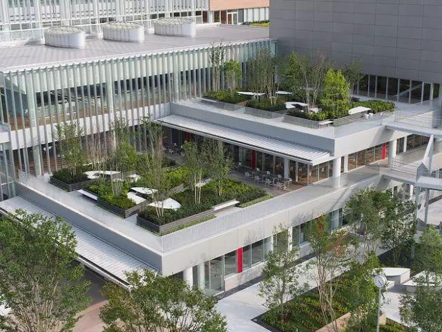 干货丨屋顶绿化知识详解,详细到什么程度你看看_29