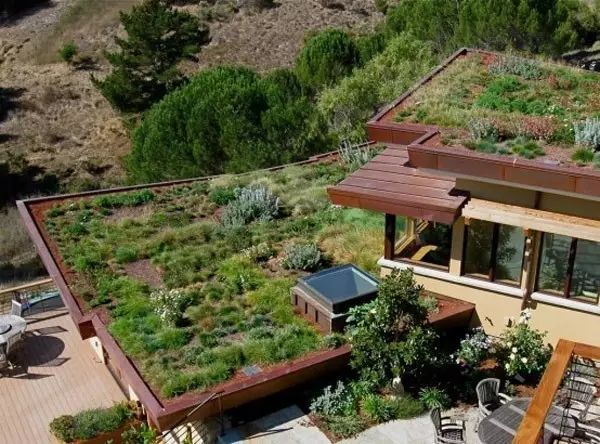 干货丨屋顶绿化知识详解,详细到什么程度你看看_23
