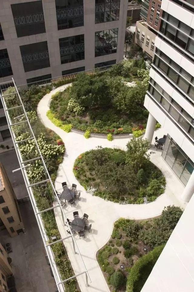 干货丨屋顶绿化知识详解,详细到什么程度你看看_25