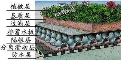 干货丨屋顶绿化知识详解,详细到什么程度你看看_47