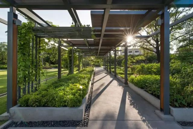 70款·各式景观花架,配上各种藤蔓植物,简直要美翻了!_2