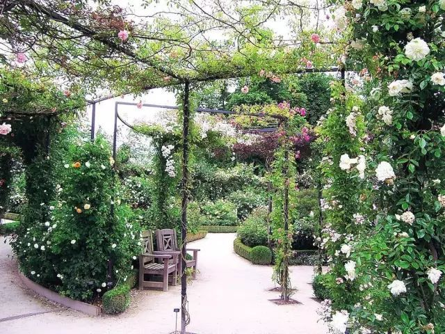 70款·各式景观花架,配上各种藤蔓植物,简直要美翻了!_14