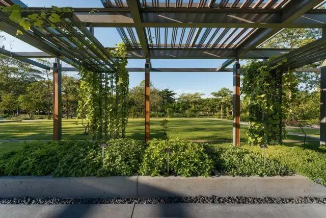 70款·各式景观花架,配上各种藤蔓植物,简直要美翻了!_29