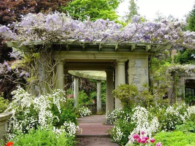 70款·各式景观花架,配上各种藤蔓植物,简直要美翻了!_35