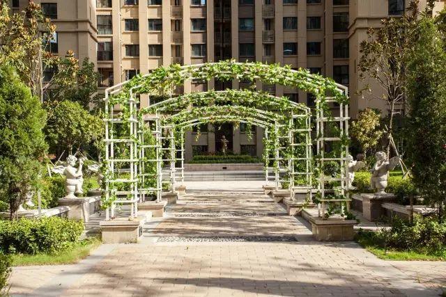 70款·各式景观花架,配上各种藤蔓植物,简直要美翻了!_42