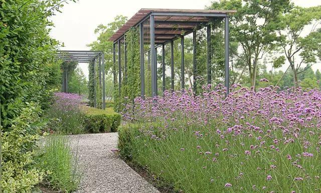 70款·各式景观花架,配上各种藤蔓植物,简直要美翻了!_68