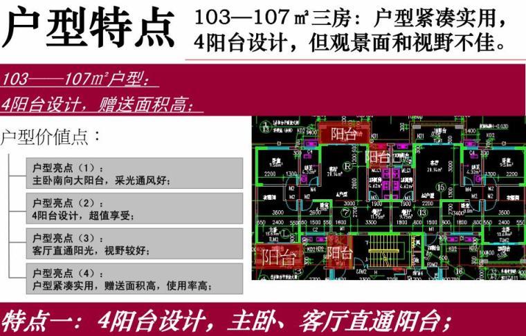 长沙湘桥佳苑营销策略总纲 (7)