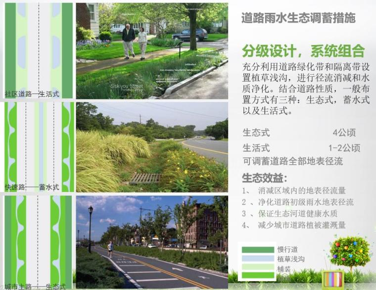 道路雨水生态调蓄措施