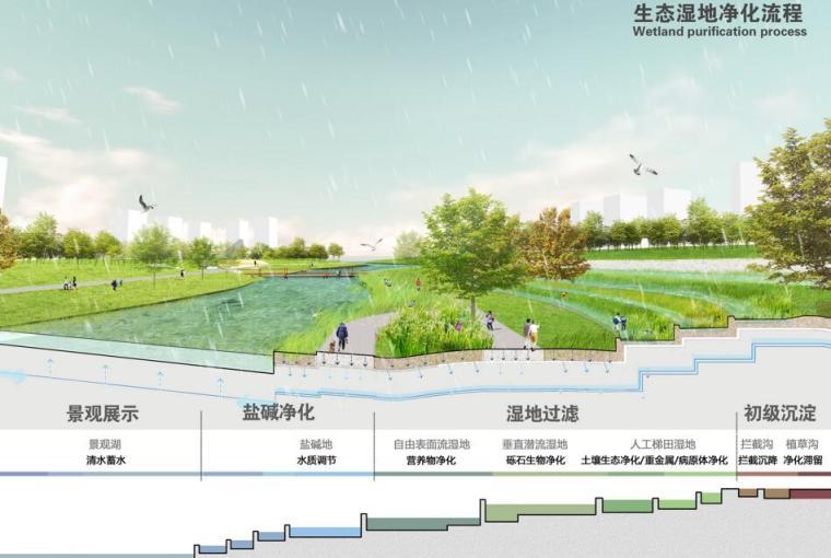 生态湿地净化流程