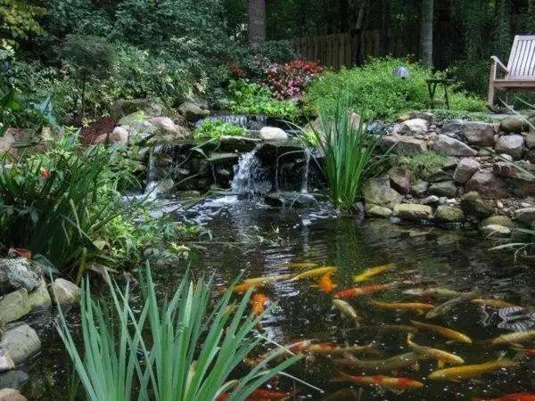 打造庭院花园怎么少的了水景,看看别人是怎么打造水景的