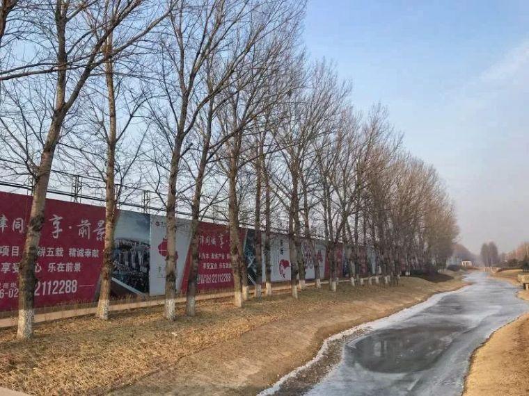 光合·森林|天津首创·禧瑞琨庭_16