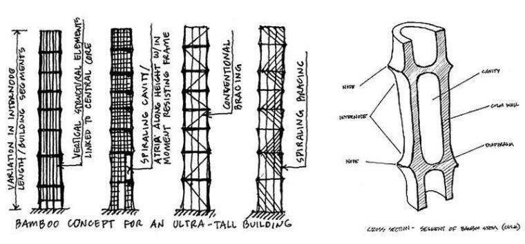 竹结构——轻质高强_12