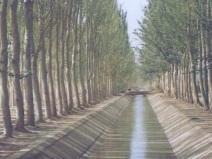 节水灌溉新技术(63页,清楚明了)