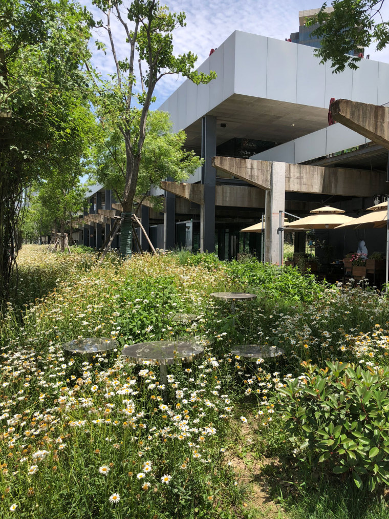 上海MOMA博物馆海滨公园-P00004