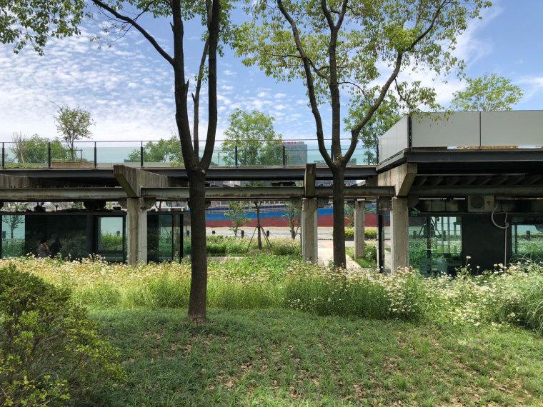 上海MOMA博物馆海滨公园-P0006