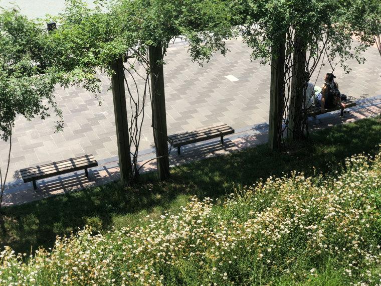 上海MOMA博物馆海滨公园-P0008