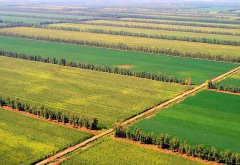 高标准基本农田建设项目监理工作总结