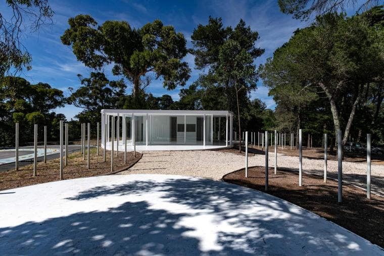 葡萄牙孟山都的白色森林景观-JV_MonsantoCVZ_B_MG_3899
