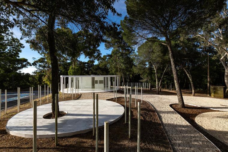 葡萄牙孟山都的白色森林景观-JV_MonsantoCVZ_B_MG_4086