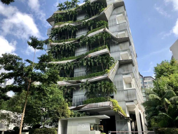 新加坡丨12个惊艳的绿色建筑(附绿建资料)_36