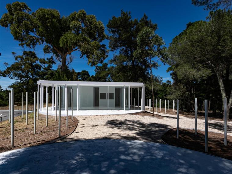 葡萄牙孟山都的白色森林景观-00