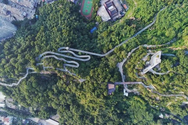 景区的网红加分项,森林步道