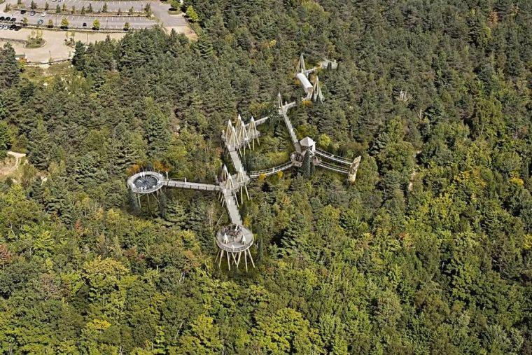 景区的网红加分项,森林步道_11