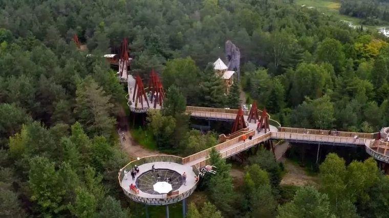 景区的网红加分项,森林步道_13