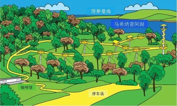 景区的网红加分项,森林步道_22