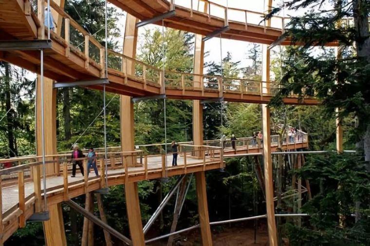 景区的网红加分项,森林步道_34