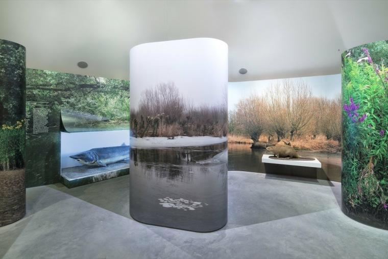 荷兰Biesbosch博物馆岛-SMV_View_Interior_Exhibition_03__©Ronald_Tilleman_MR