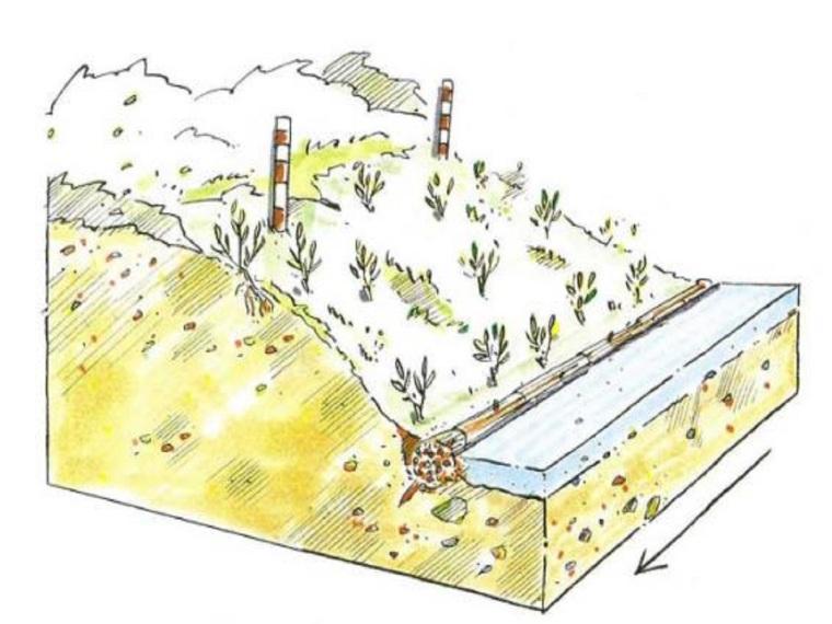 河道生态修复技术(13页,清楚明了)