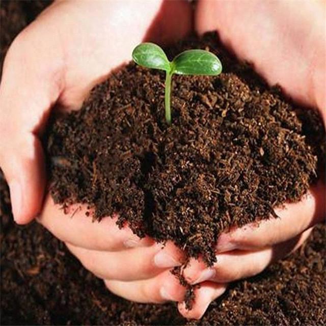 花养的好不好,花土是关键!这8种花土选对-花土2