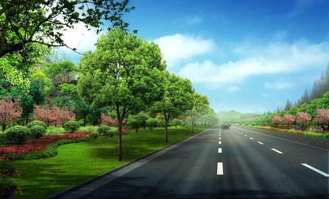 新建道路工程质量创优计划(63页)