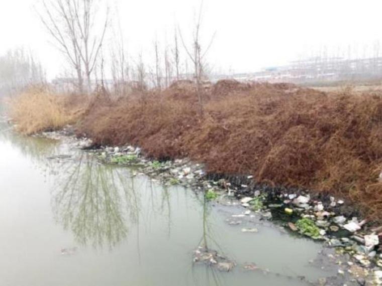护城河黑臭水体治理工程