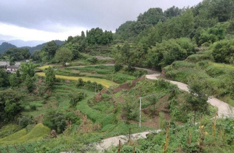 县村硬化路(支线)工程施工组织设计