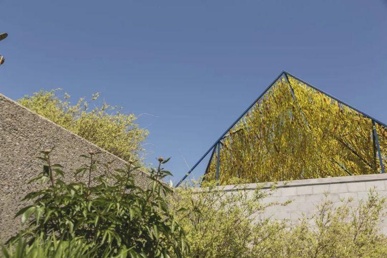 趣味、活力与自然-垂直花园II/RefordG_4