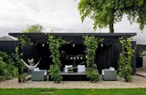 一个简单的花架,却美了整个院子