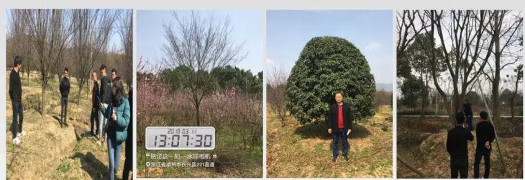 多方胜境,咫尺山林│弘阳甪源名筑_8
