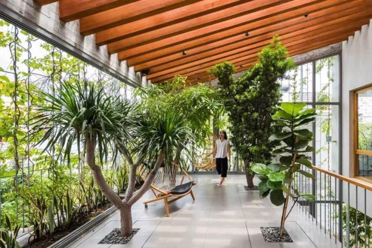 越南胡志明市住宅案例:树屋