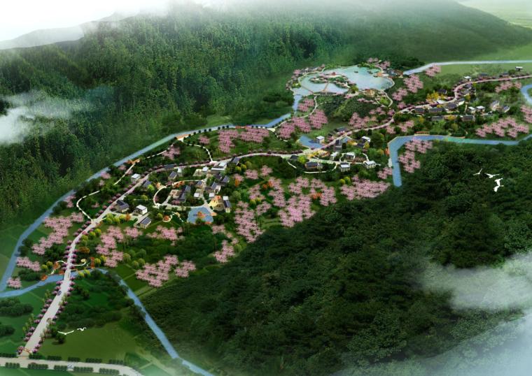 [四川]仁寿太清村生态乡村旅游新村规划图