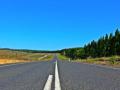 湖北某公路隧道投标施工组织设计方案建议书