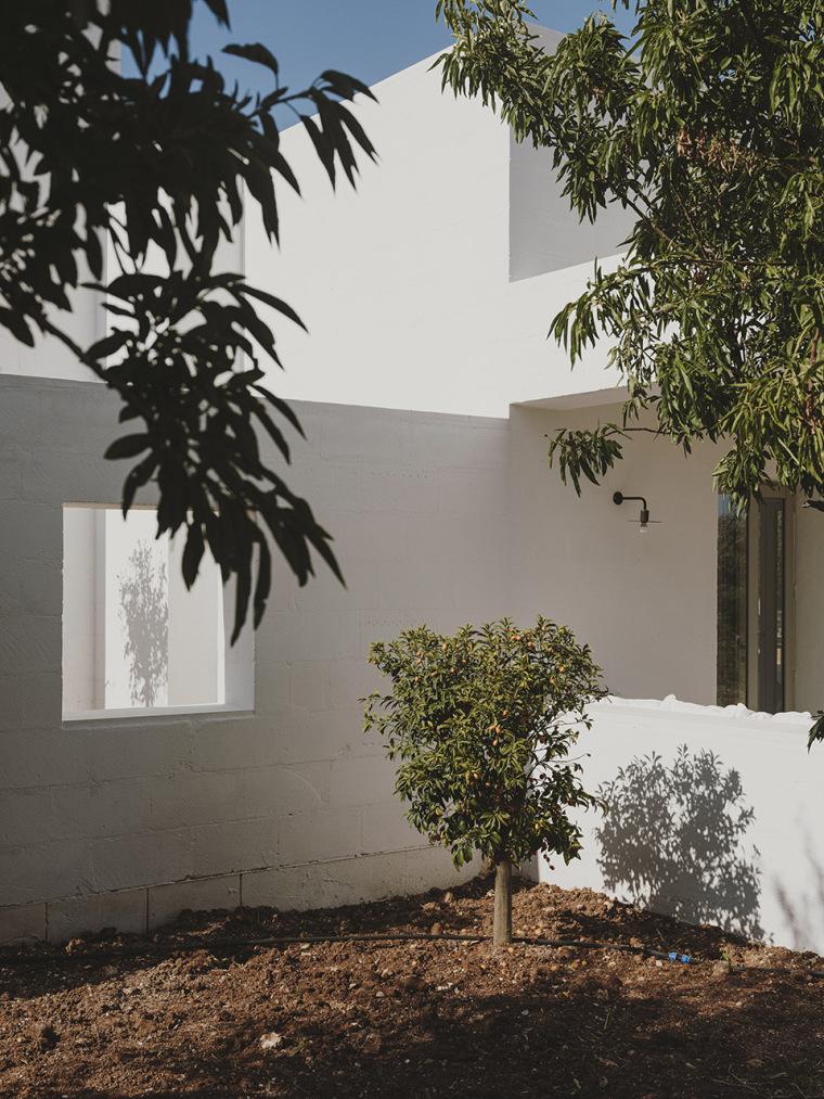 014-villa-cardo-by-studio-andrew-trotter